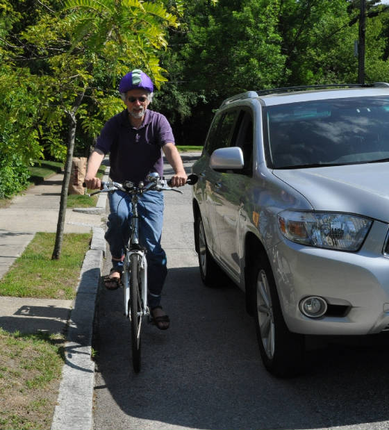 دراج يسير بمحاذاة الرصيف