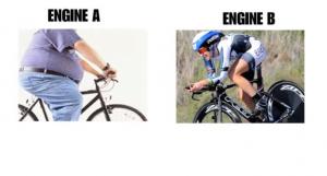 دراج سمين ودراج رياضي